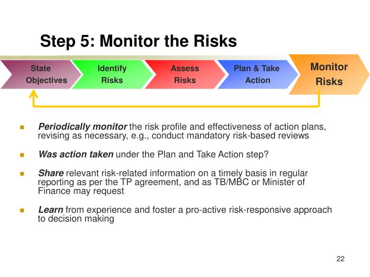 Step 5: Monitor the Risks