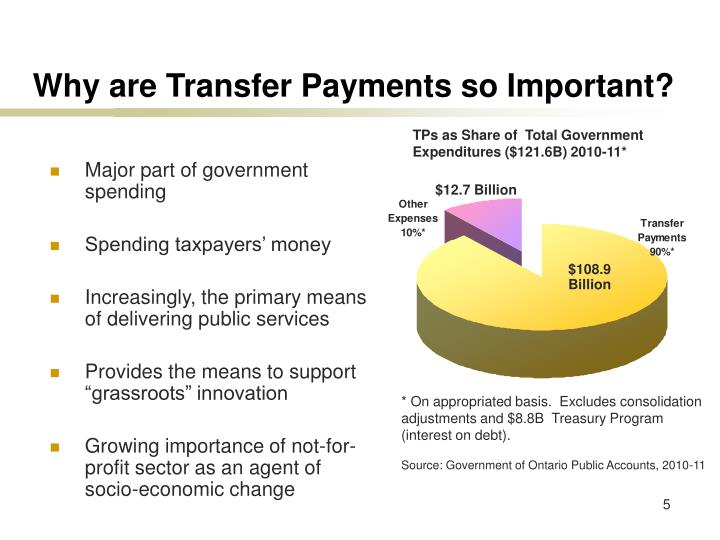 Why are Transfer Payments so Important?