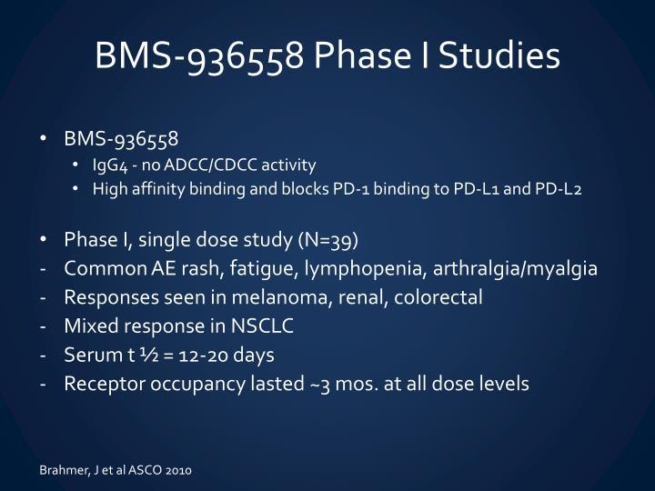 BMS-936558 Phase I Studies