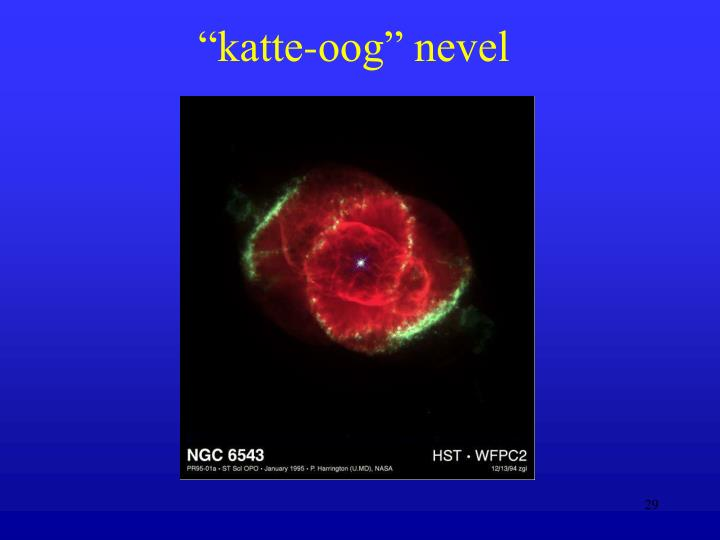 """katte-oog"" nevel"