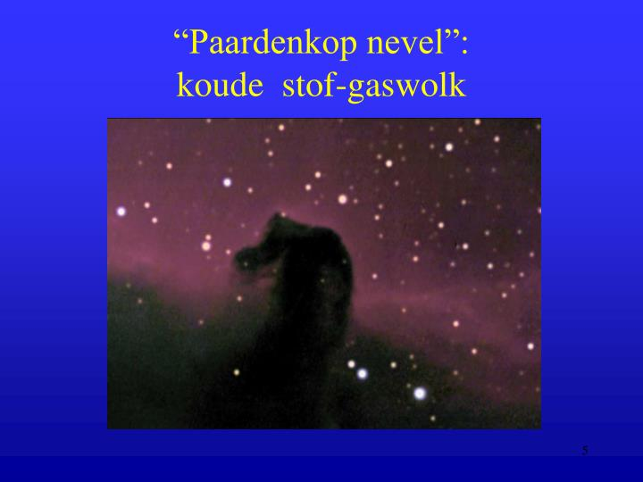 """Paardenkop nevel"":"