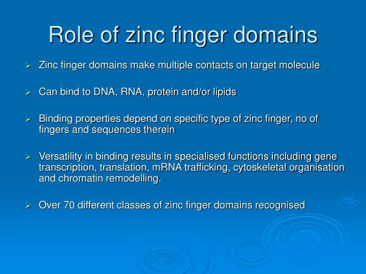 Role of zinc finger domains