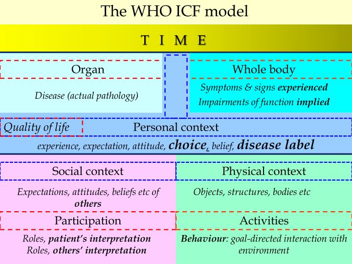 The WHO ICF model