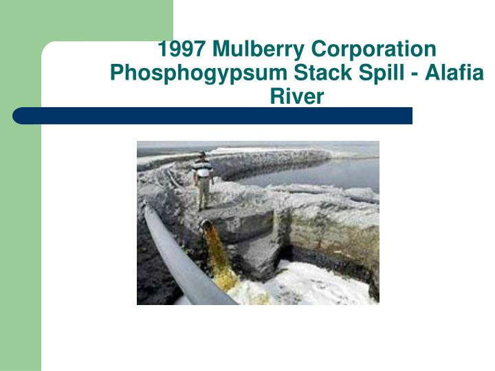 1997 Mulberry Corporation Phosphogypsum Stack Spill - Alafia River