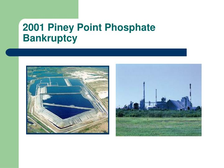 2001 Piney Point Phosphate Bankruptcy