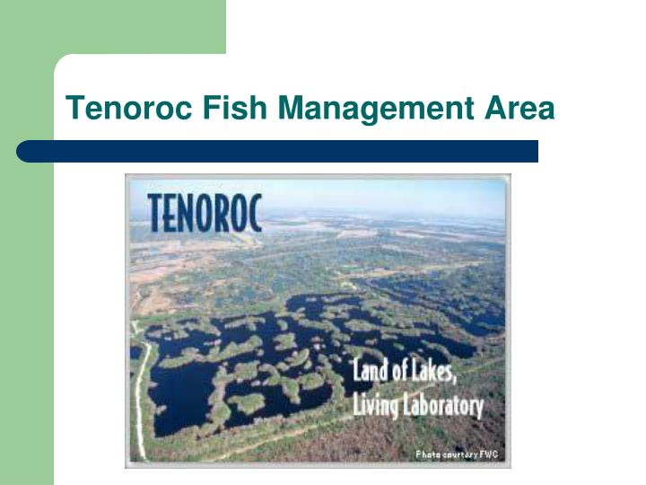 Tenoroc Fish Management Area