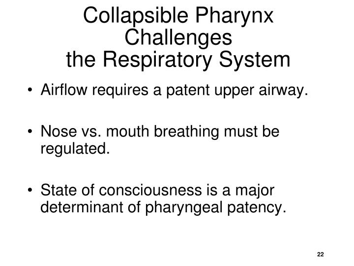 Collapsible Pharynx Challenges