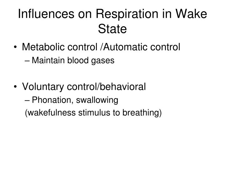 Influences on Respiration in Wake State