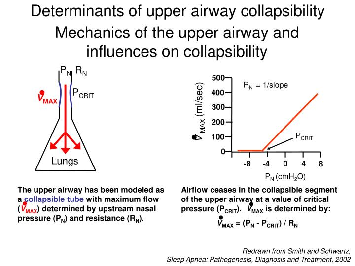 Determinants of upper airway collapsibility