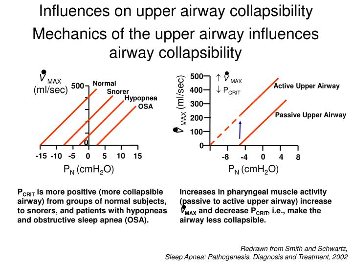 Influences on upper airway collapsibility