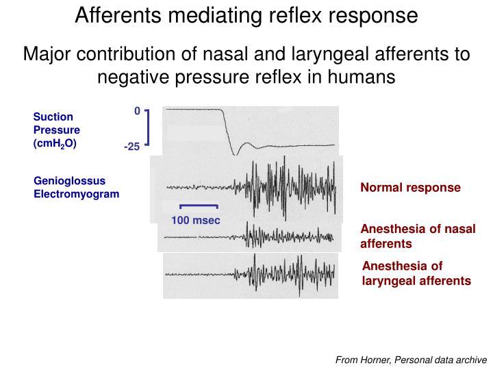 Afferents mediating reflex response