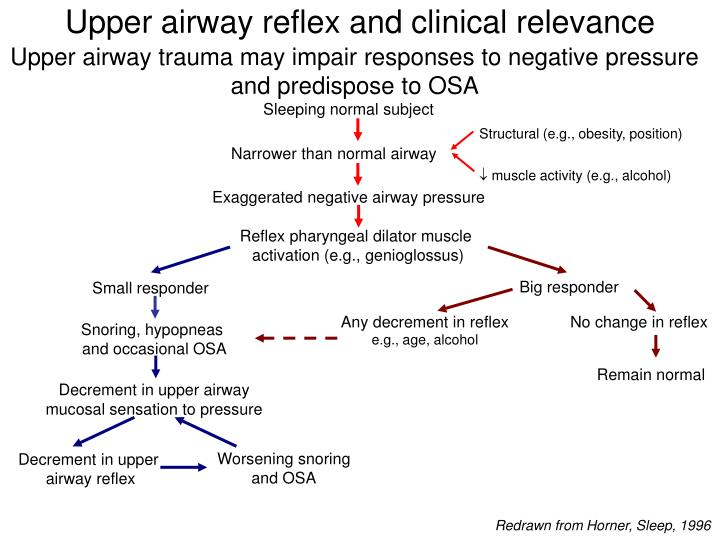 Upper airway reflex and clinical relevance