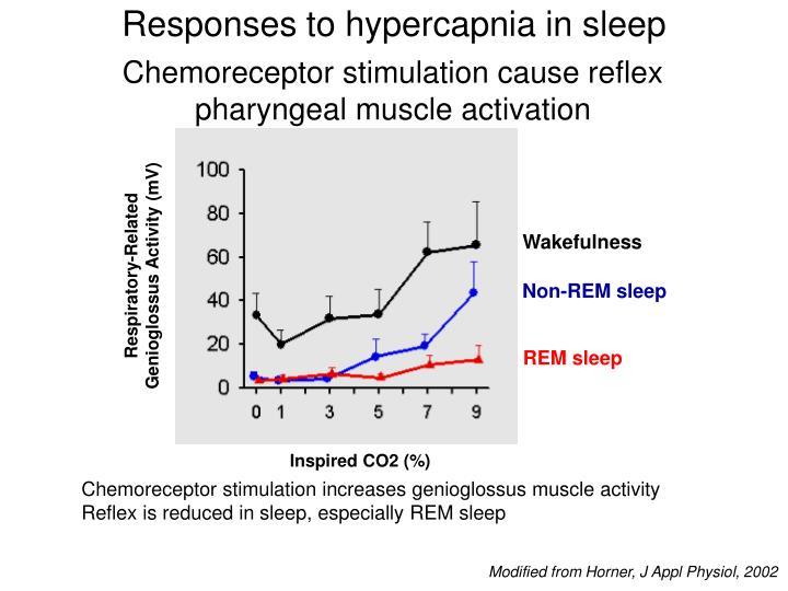 Responses to hypercapnia in sleep