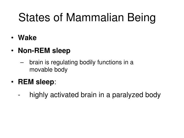 States of Mammalian Being