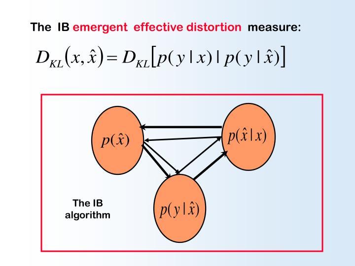 The  IB