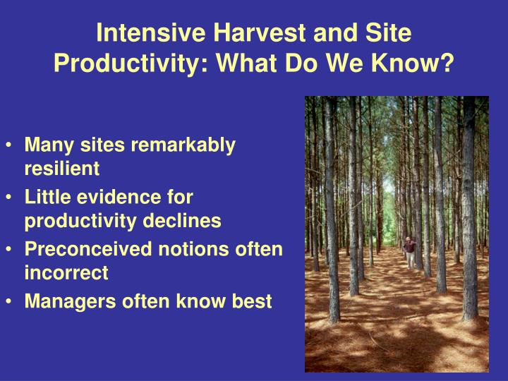 Intensive Harvest and Site Productivity: What Do We Know?
