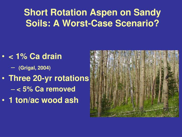 Short Rotation Aspen on Sandy Soils: A Worst-Case Scenario?