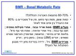 bmr basal metabolic rate