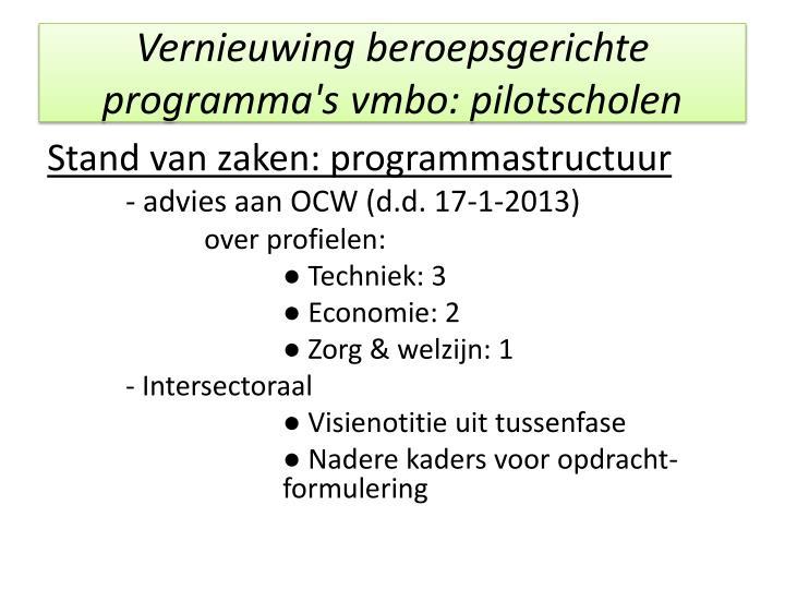 Vernieuwing beroepsgerichte programma's vmbo: pilotscholen