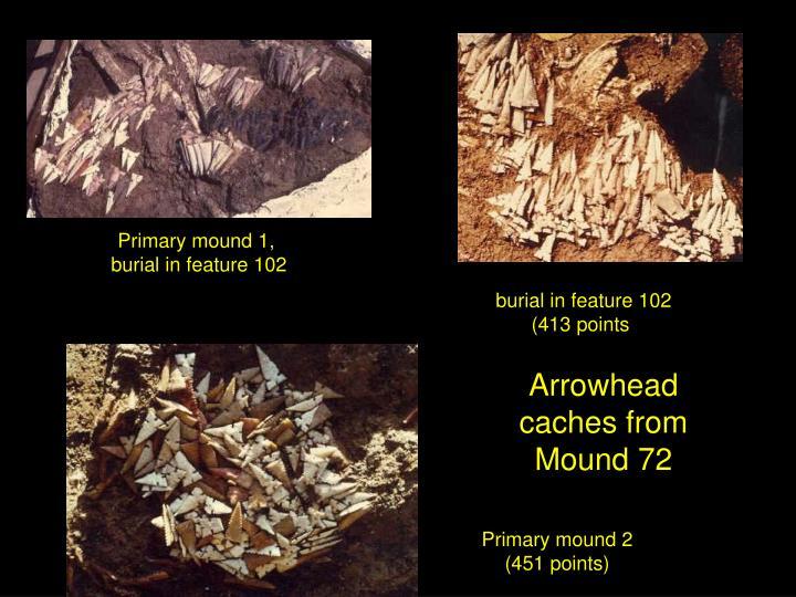 Primary mound 1,