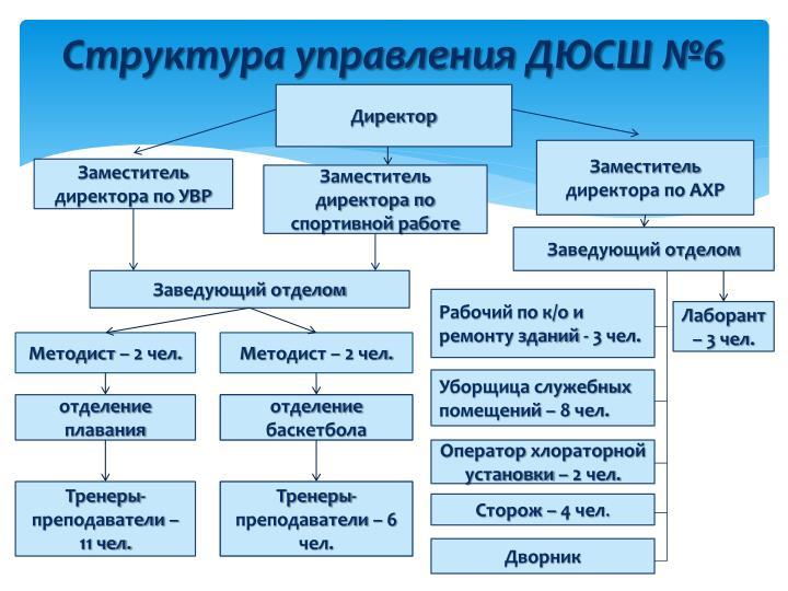 Структура управления ДЮСШ №6