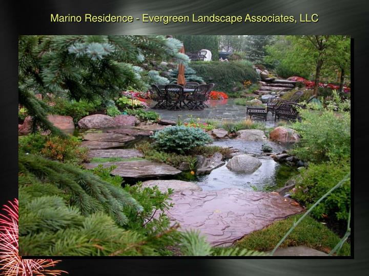 Marino Residence - Evergreen Landscape Associates, LLC