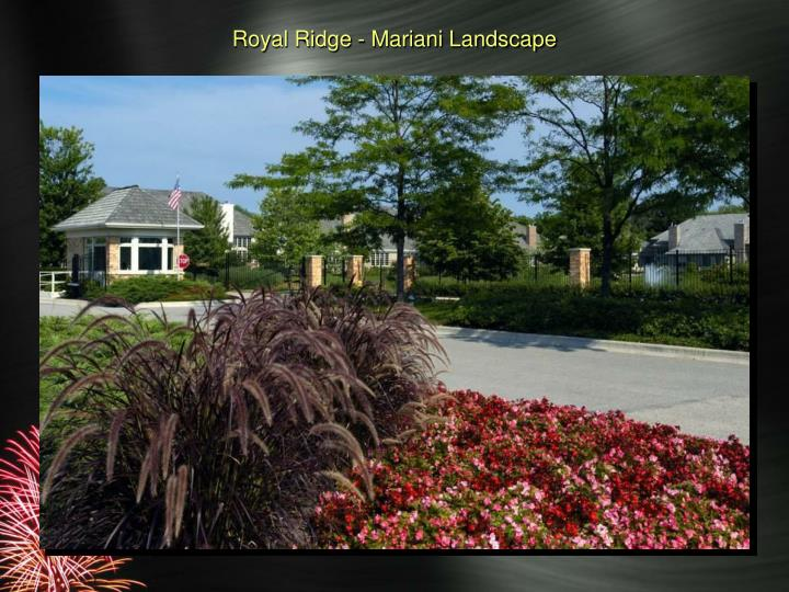 Royal Ridge - Mariani Landscape