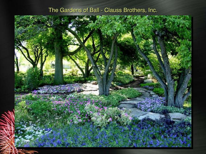 The Gardens of Ball - Clauss Brothers, Inc.