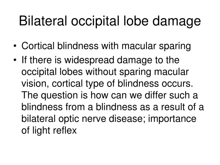 Bilateral occipital lobe damage