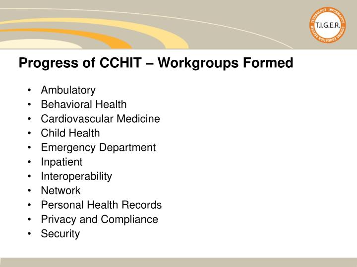 Progress of CCHIT – Workgroups Formed