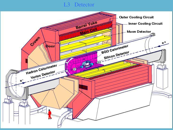 L3   Detector