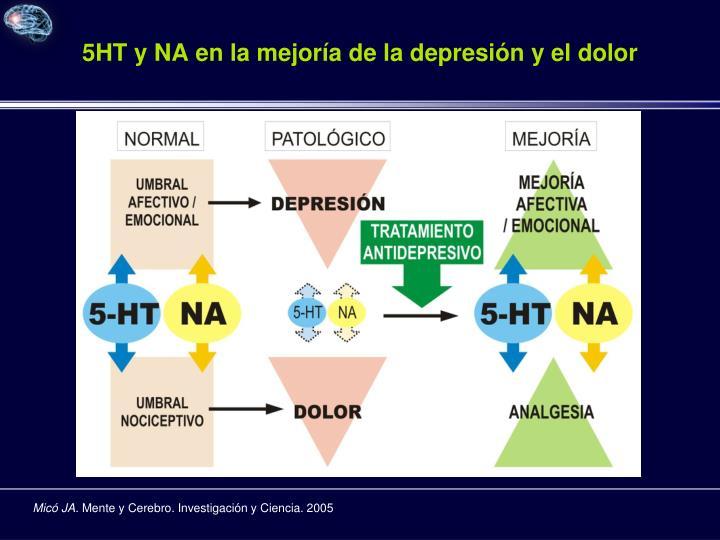 5HT y NA en la mejoría de la depresión y el dolor