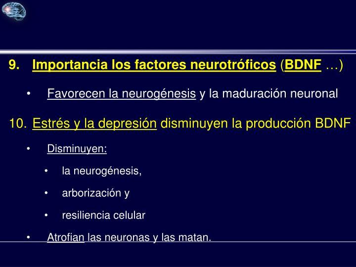 Importancia los factores neurotróficos