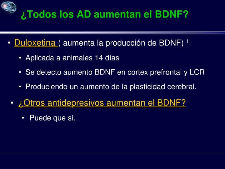 ¿Todos los AD aumentan el BDNF?