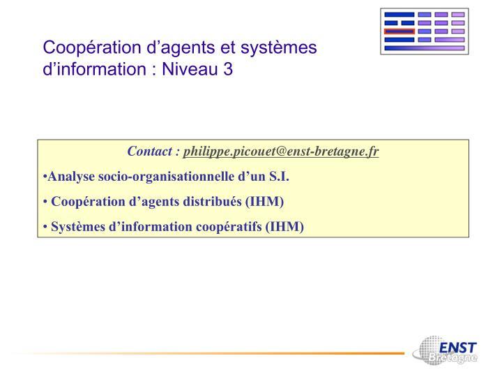 Coopération d'agents et systèmes d'information : Niveau 3