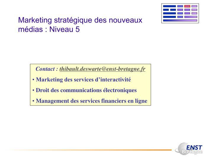 Marketing stratégique des nouveaux médias : Niveau 5
