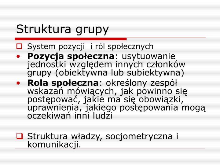 Struktura grupy