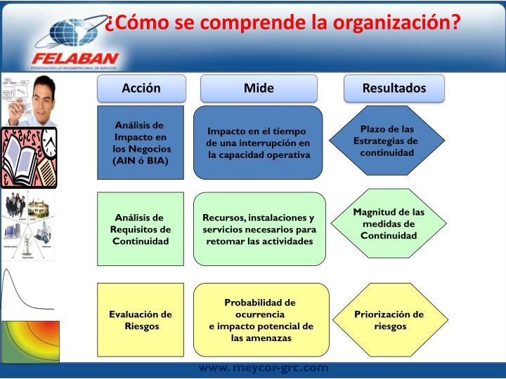 ¿Cómo se comprende la organización?