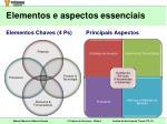 elementos e aspectos essenciais