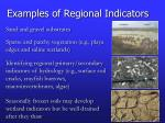 examples of regional indicators1