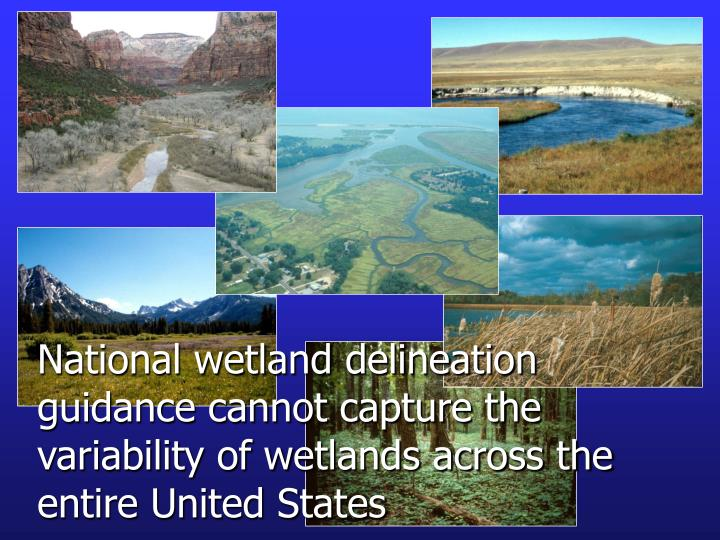 National wetland delineation guidance cannot capture the variability of wetlands across the entire U...
