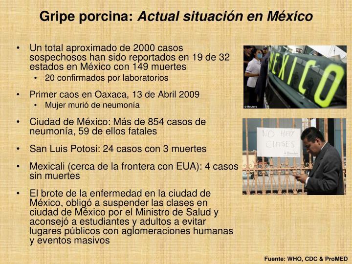 Un total aproximado de 2000 casos sospechosos han sido reportados en 19 de 32 estados en México con 149 muertes