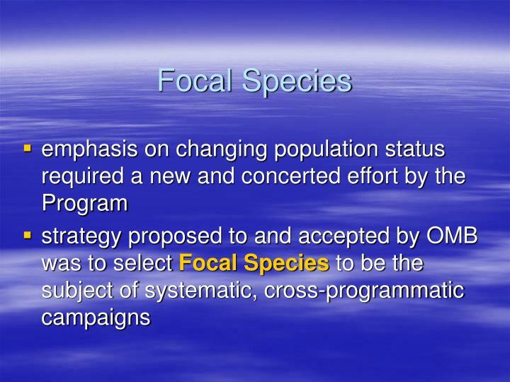 Focal Species