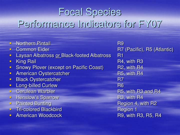 Focal Species