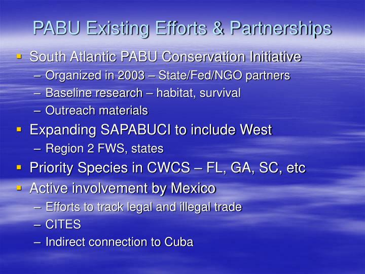 PABU Existing Efforts & Partnerships