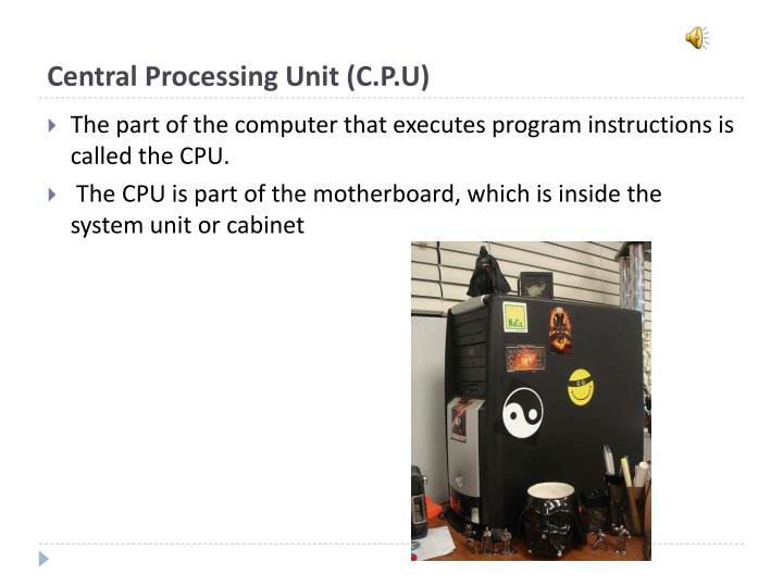 Central Processing Unit (C.P.U)