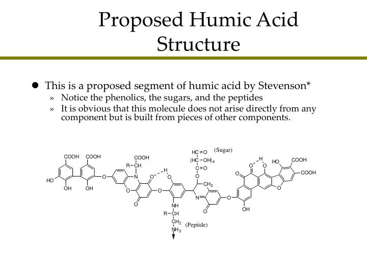 Proposed Humic Acid Structure