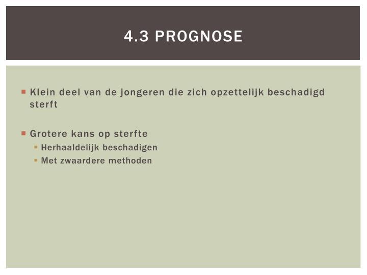 4.3 Prognose