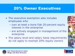 20 owner executives