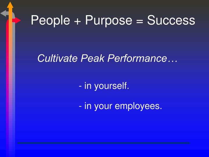 People purpose success